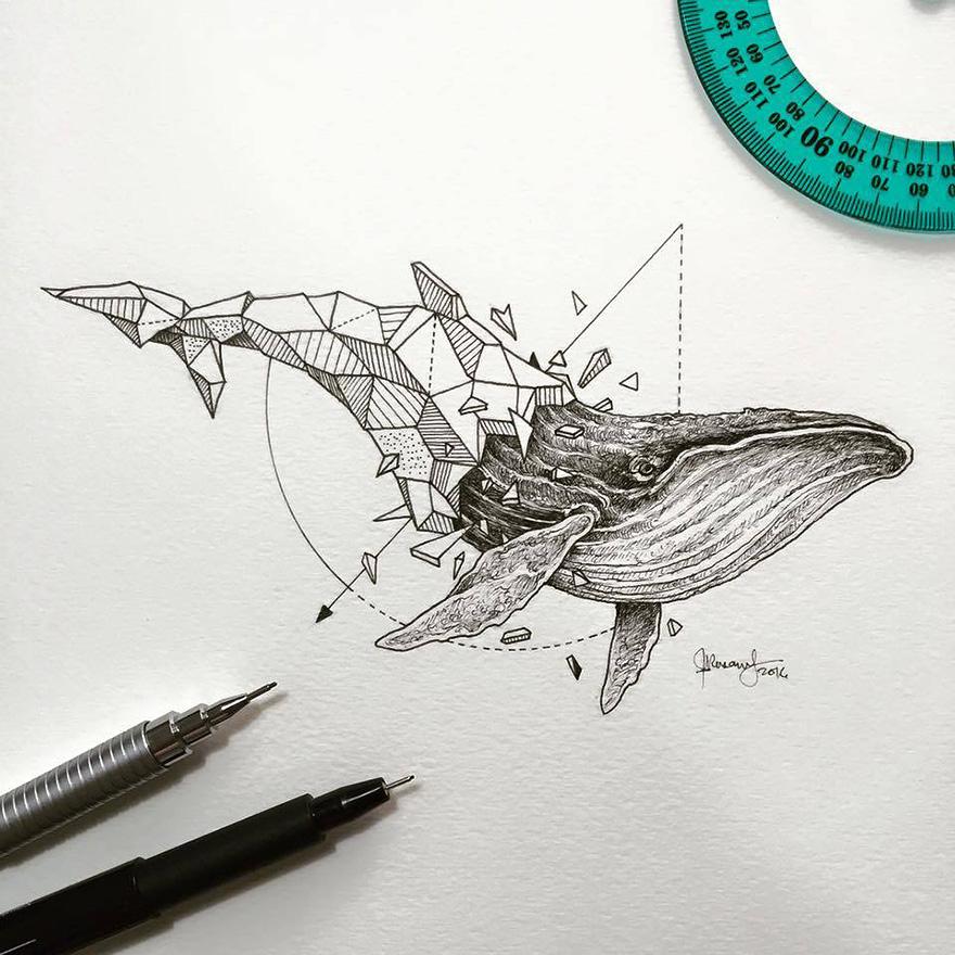 Increíbles dibujos \'geométricos\' de animales salvajes – Arte Feed